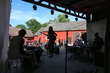 Mossgårdsfestival _20140615_5576s-1